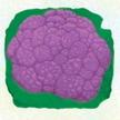 Cauliflower: Purple of Sicily image