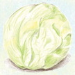 Lettuce: Iceberg image