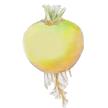 Turnip: Boule D'Or image