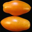 Tomato: Orange Icicle image