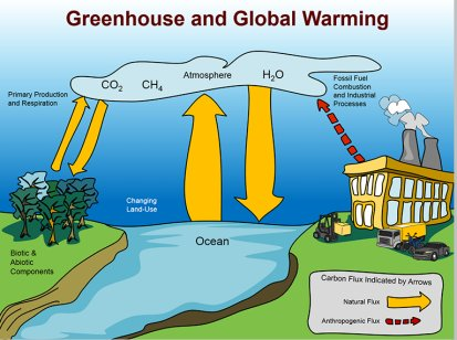 Questions and answers cbse icse solutions cbse icse study global warming is the increase of earths average surface temperature due to effect of greenhouse gases such as carbon dioxide emissions from burning ccuart Image collections