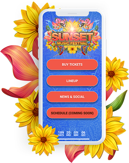 Sunset Music Festival Image