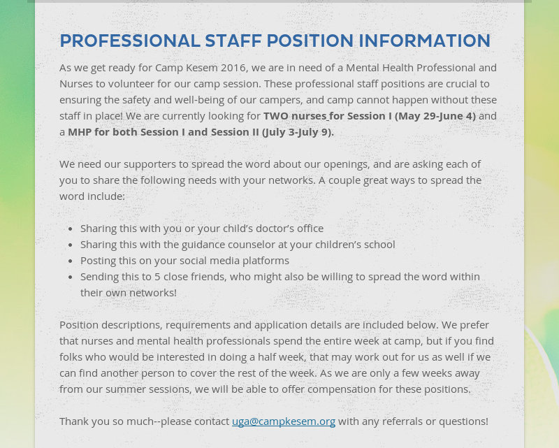 PROFESSIONAL STAFF POSITION INFORMATION