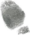 Covert Investigative Services