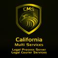 CALIFORNIA MULTI SERVICES PROCESS SERVER & COURIER SERVICES