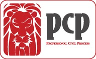 Professional Civil Process