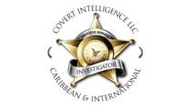 COVERT INTELLIGENCE, LLC