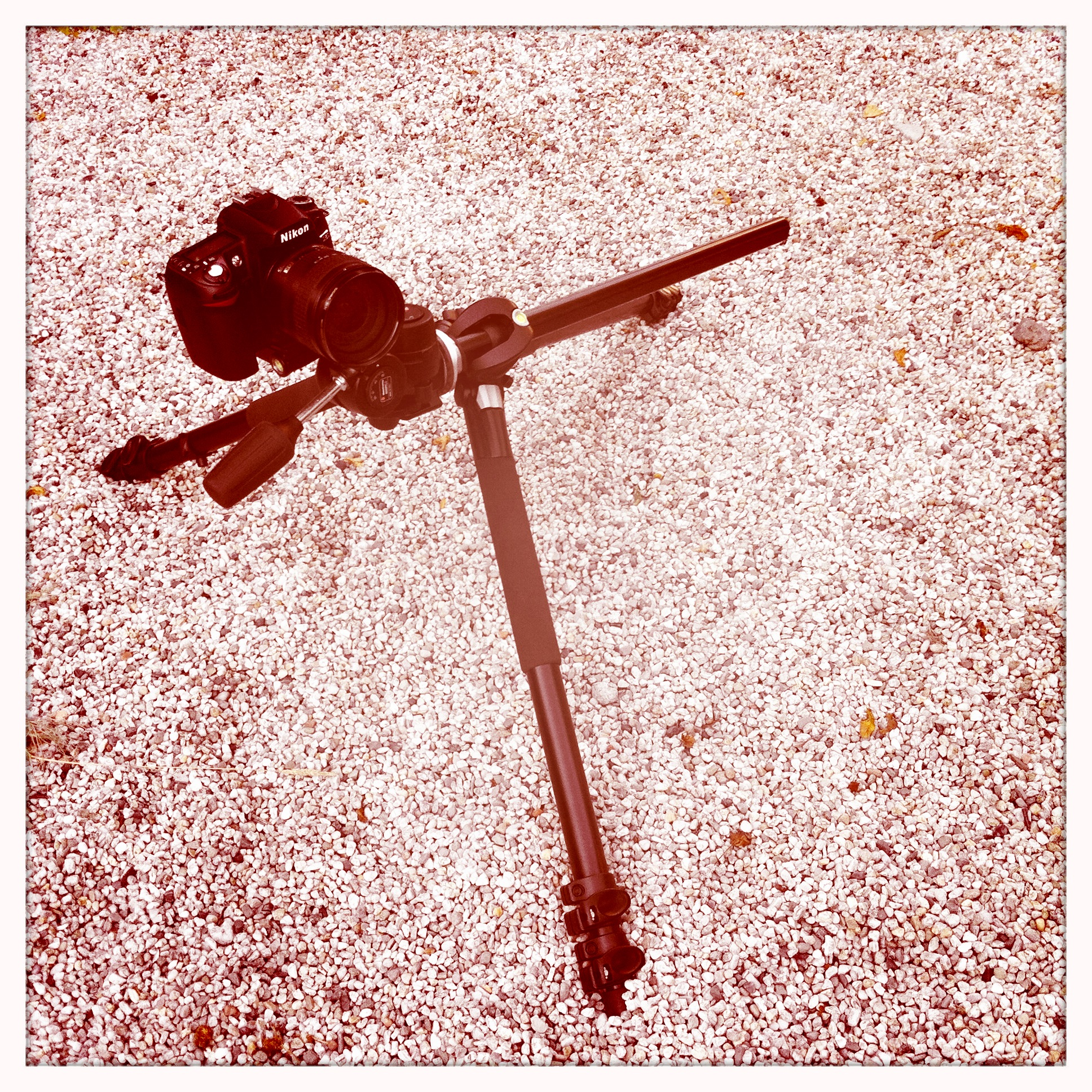 Manfrotto 055XPROB 804RC2