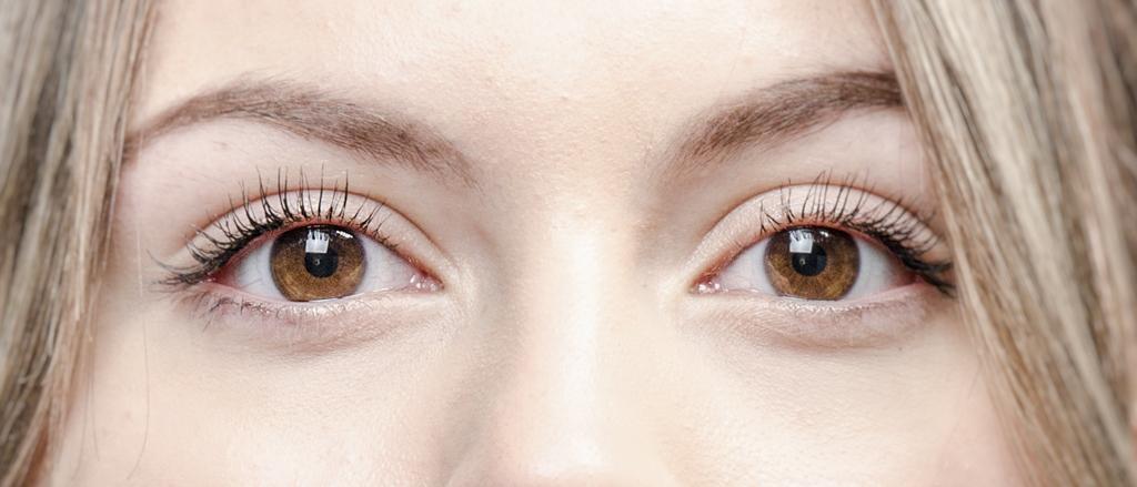 Wat is een catchlight - Priscilla Closeup