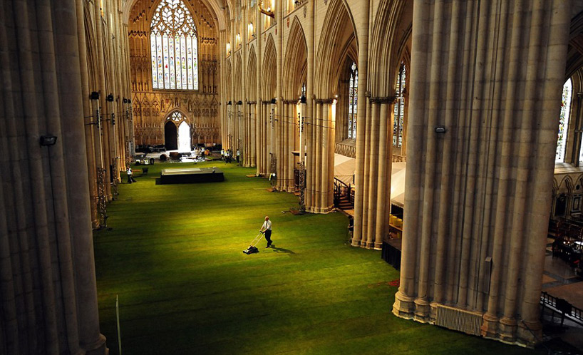 York Minster Wow Grass