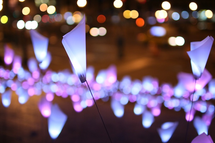 LED flower installation