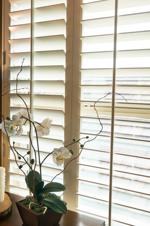 wooden-shutters-gallery-of-shades.jpg