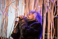 Thumb_flaming_lips-7