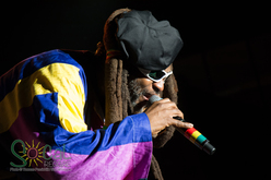Thumb_steel_pulse