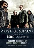 Thumb_2014_alice_in_chains_down