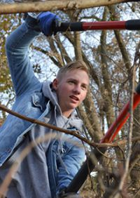 Junior Jack Schneider cut away scraggly nuisance trees