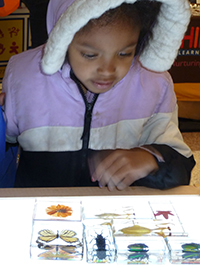 Antwonnette Siekierk checks out colorful critters