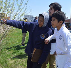 "UPrep students (left to right) Jarese Jones, David Lopez and Anthony Leon check out a natural urban woodland. ""I've learned to be respectful of nature and what God gave us,"" Jarese said"