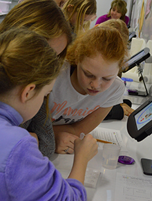 Lara Edwards, center, uses a pipette to administer water droplets with food coloring as Sienna Larson and Natalie Bitley observe the changes in tint