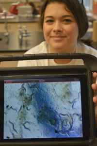 Senior Tiana-Marie Peavey shows a microscopic image of C. elegans roundworms
