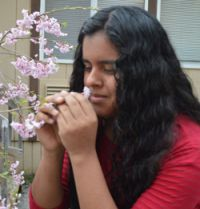 Junior Ana Valle smells a cherry blossom plant in the schoolyard where students are growing plants and wildflowers