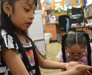 Camila Contreras-Torres holds a squirmy worm