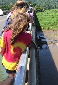 Crocodile watch: Students observe 39 kiddo crocs from a safe distance