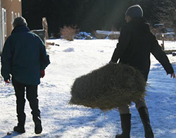 Hauling hay was just one of many chores Parker Reed and two classmates performed at the Lowell Farm & Wildlife Center