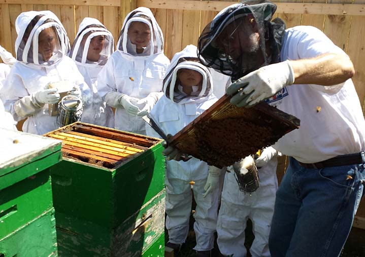 Beekeeper Charlie Knudstrup shows students a honeycomb, while a couple of them hold smoke censers to confuse the bees' sense of smell