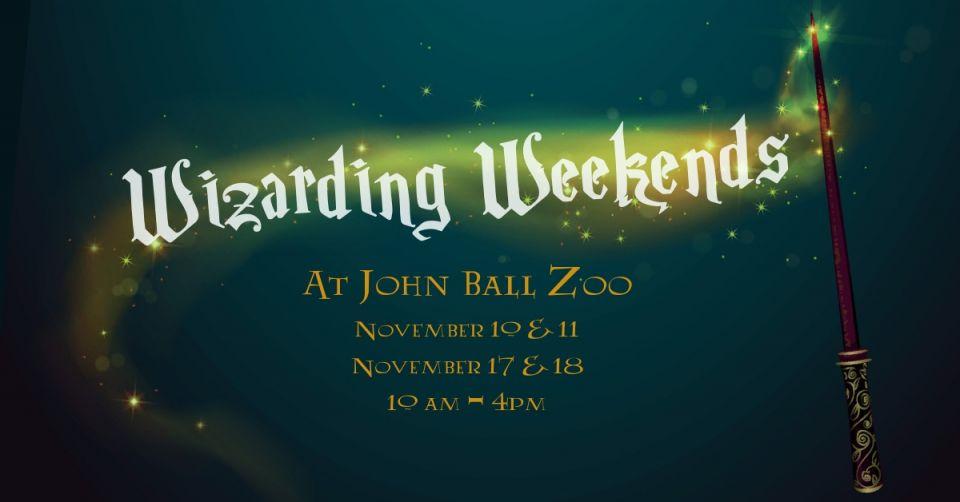 john ball zoo christmas lights