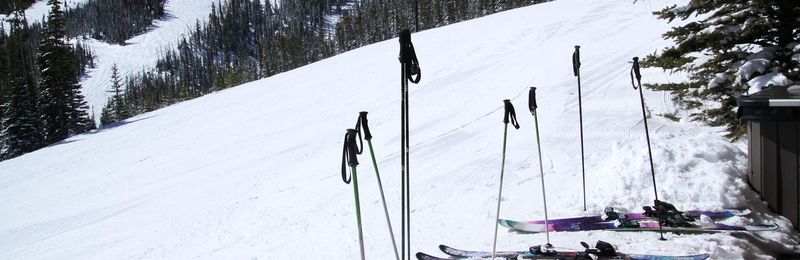 Boyne and Powdr join ski teams