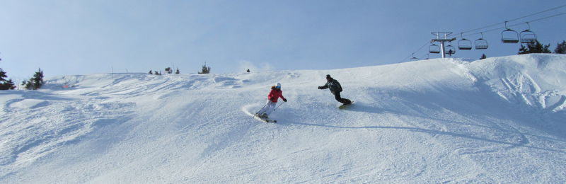 Skiers versus Snowboarders at Alta