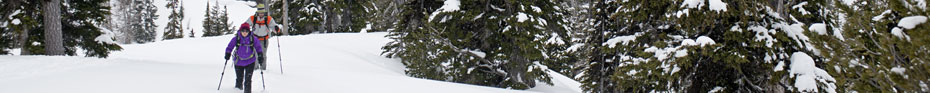 Choose the right snowshoe