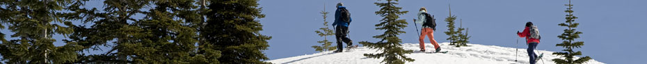 Snowshoeing is a healthy, fitness activity