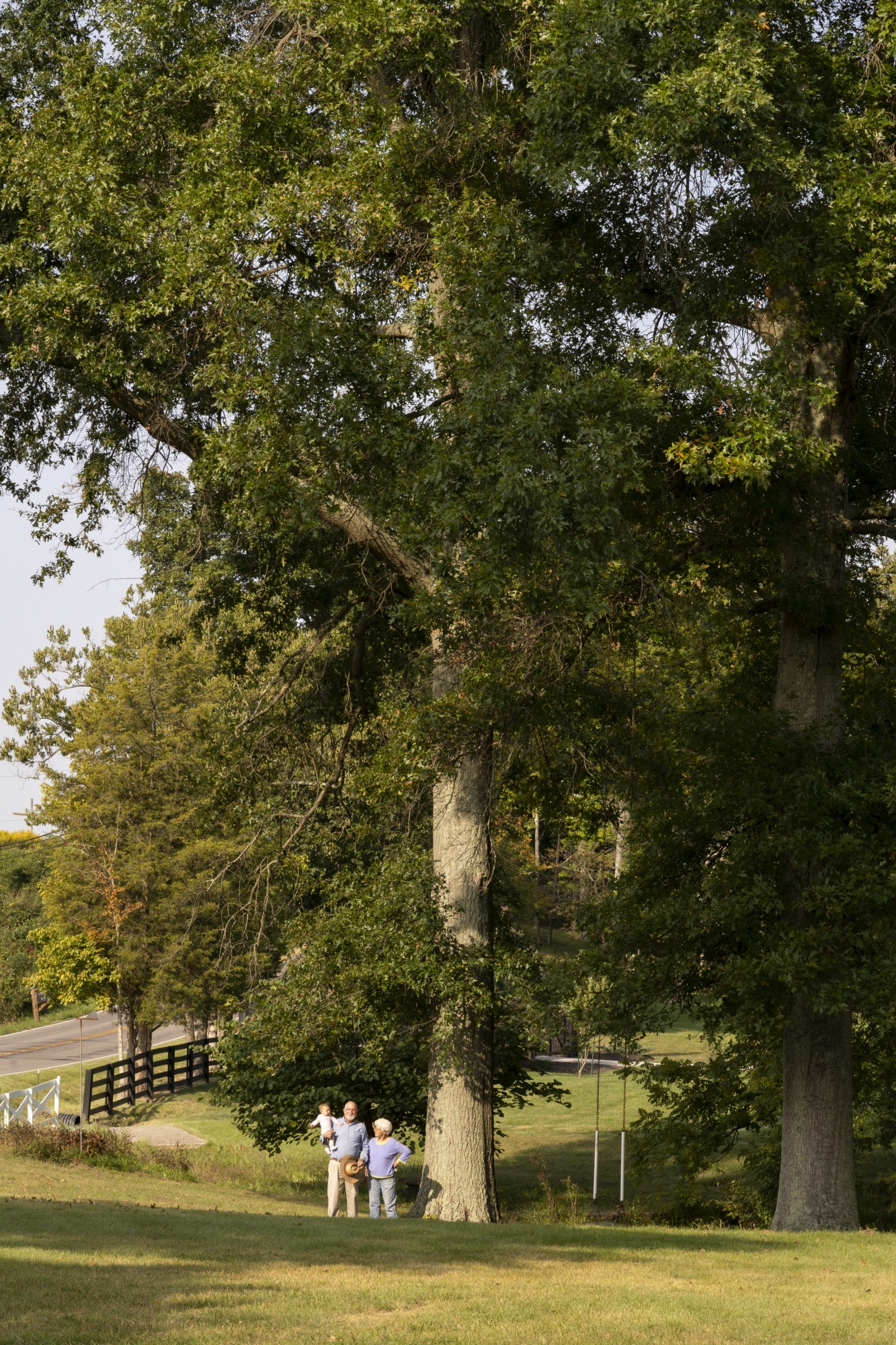 Pat Hill, 66, Norah Jane Hill, 9 months, and Becky Hill, 69, of Loveland, Ohio, with their Oak Trees on Wednesday, Sept. 23, 2020.