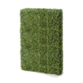Boxwood Hedge Wall Small