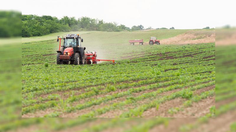 Farmers seeding in NW region hoping for rain