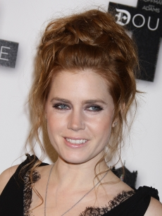 Women's Hairstyles - Updo - Amy Adams