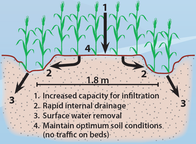 Raised bed cropping fact sheets for Soil quality definition