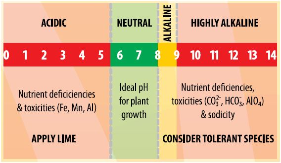 soil ph sa fact sheets soilquality org auwhat is soil ph?