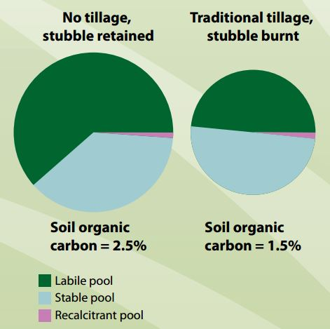 Labile organic carbon nsw fact sheets for Soil organic carbon