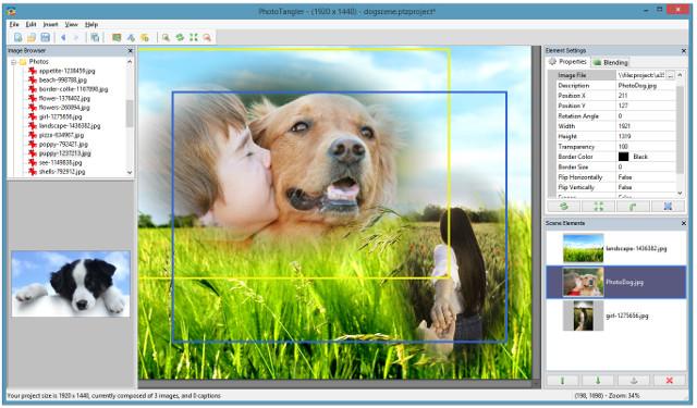 PhotoTangler Collage Maker