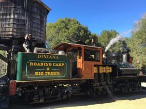 BigTrees - Dixana Locomotive