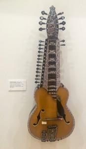 MIM Chaturangui slide guitar