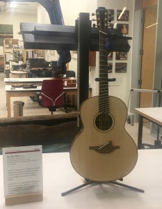 MIM F35 Fan Fret Guitar