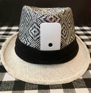 DEFCam hat