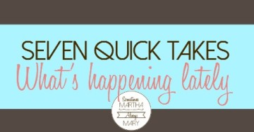 7 quick takes happenings