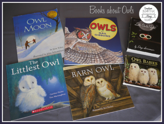 books-about-owls-graphic