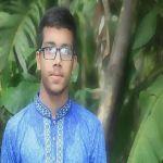 নোমান সাদী