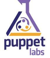 Montreal: Puppet Fundamentals Training-Jul